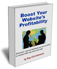 Website tips book